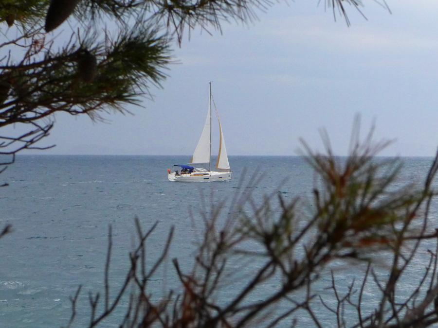 Segeltörns Organisation Kroatien